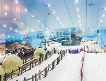 Điều hấp dẫn tại khu trượt tuyết Ski Dubai