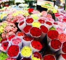 Chợ hoa Pak klong Talad- Thái Lan